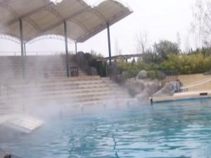 nebulización agua espectaculos exterior