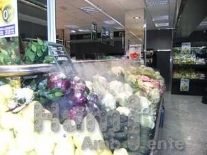 feycas_verduras