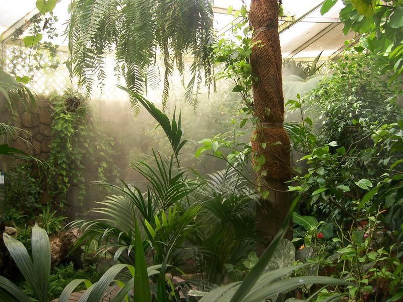 control humedad invernaderos
