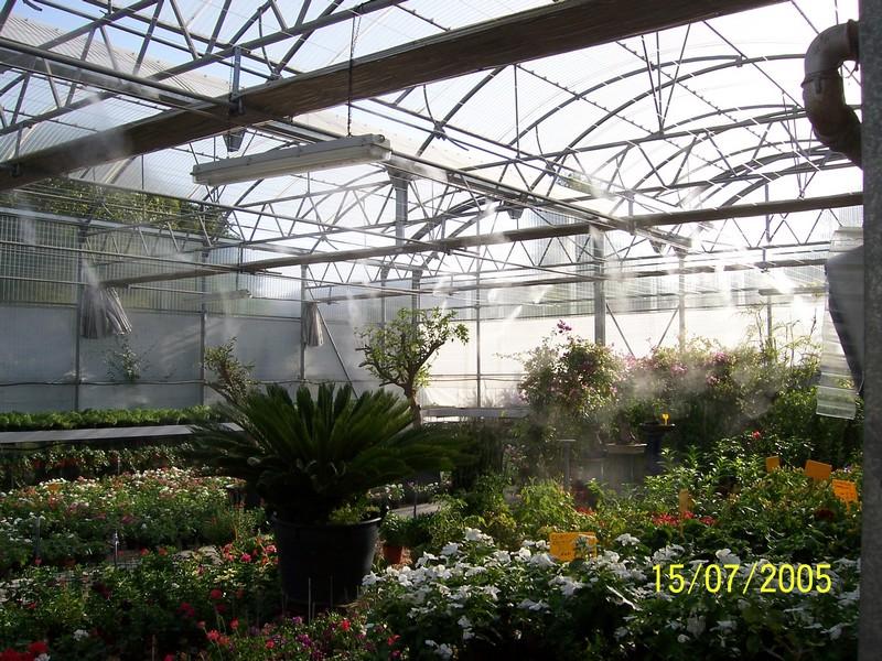 humidificación invernaderos
