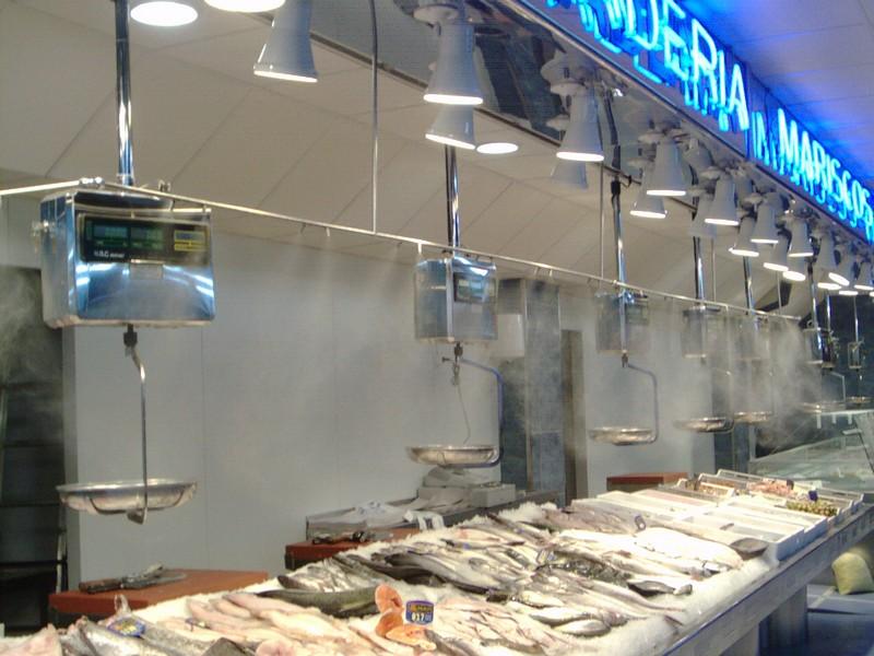 nebulización agua pescaderías