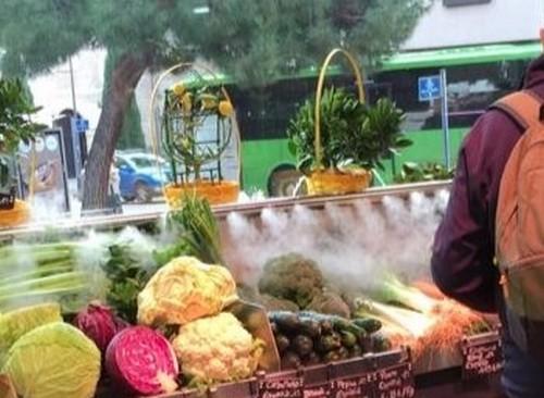 humidificacion verduras - humidificacion en verduras
